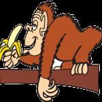 抗酸化作用のある食べ物はバナナ!バナナの抗酸化作用で美しく痩せる